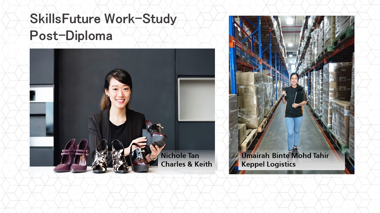 SkillsFuture Work-Study Post-Diploma (formerly Earn & Learn Programme)
