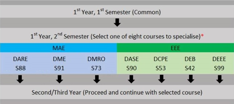 DCEP course overview